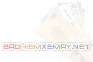 baohiemxemay-web-2